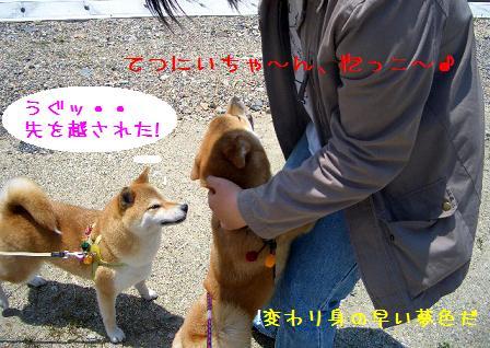 CIMG5462_edited.jpg