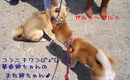 CIMG5464_edited.jpg