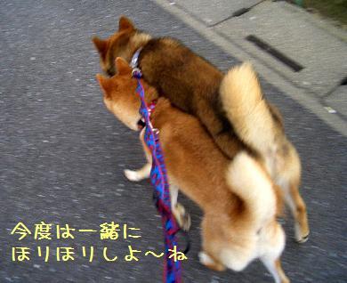 CIMG5937_edited.jpg