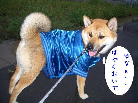 yunaoide.jpg
