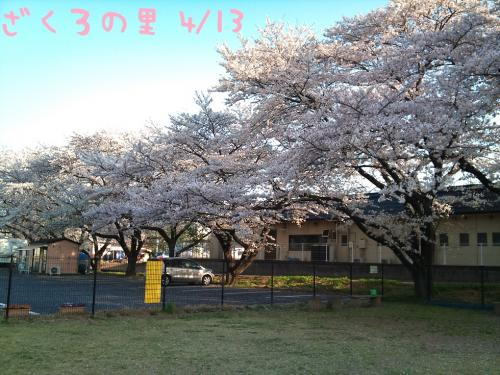 DSC_0098-0414.jpg