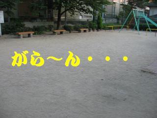 20070822220127.jpg