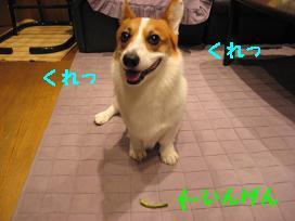 20070823224525.jpg