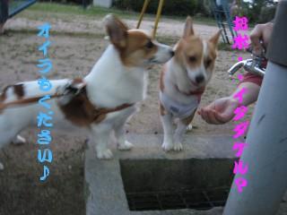 20070831235211.jpg
