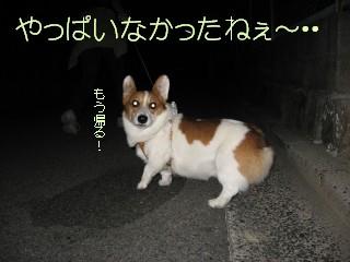 20070930134501.jpg