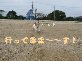 20071008193755.jpg