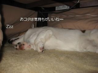 20071025214601.jpg
