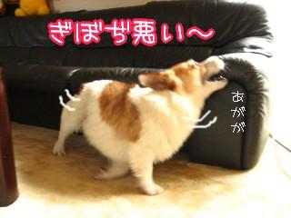 ぎぼぢ悪い~