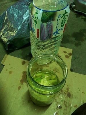 柿渋 011