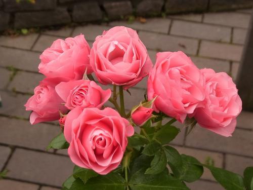 Bouquet Marie