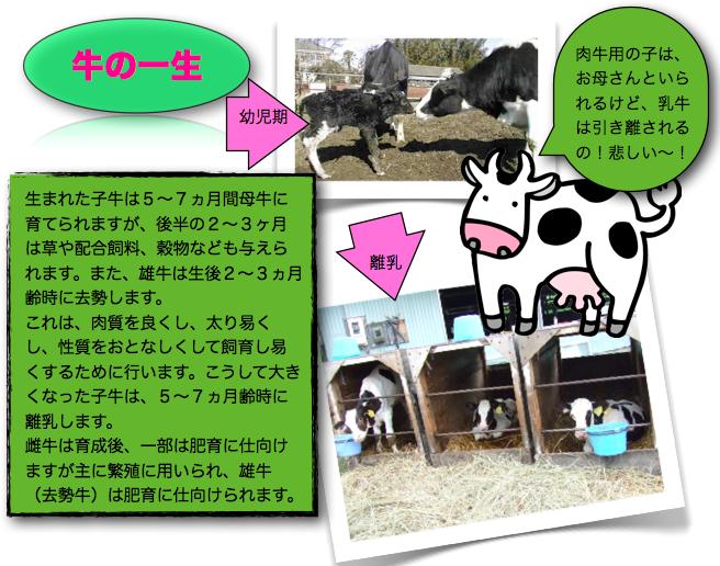 スクリーンショット(2011-03-20 22.23.45)