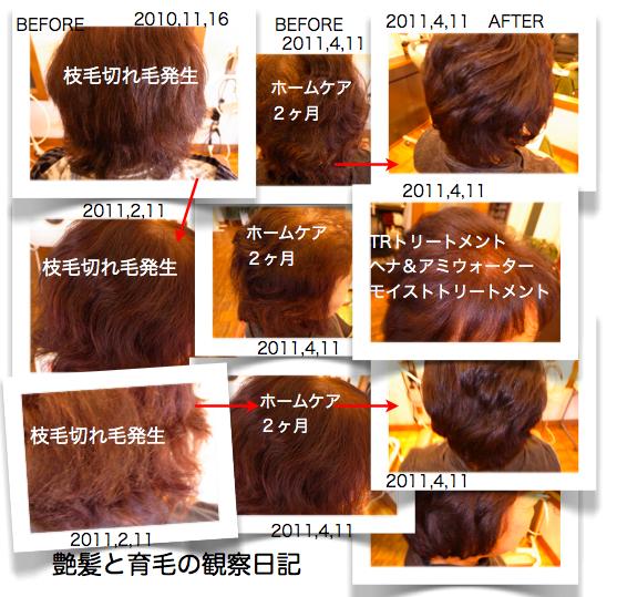 スクリーンショット(2011-04-26 9.17.46)