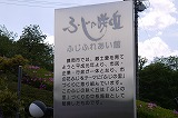 P1530589.jpg