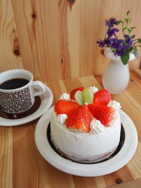 cake×faenza