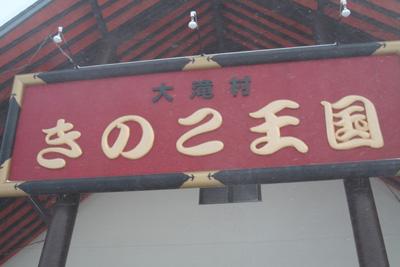 2008_0113_04.jpg