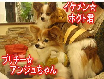 1.31ホクトくん&アンジュちゃん