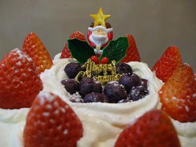 クリスマスケーキ 007-12