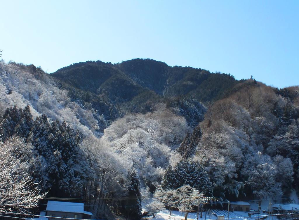 DSCF7069-yuki.jpg