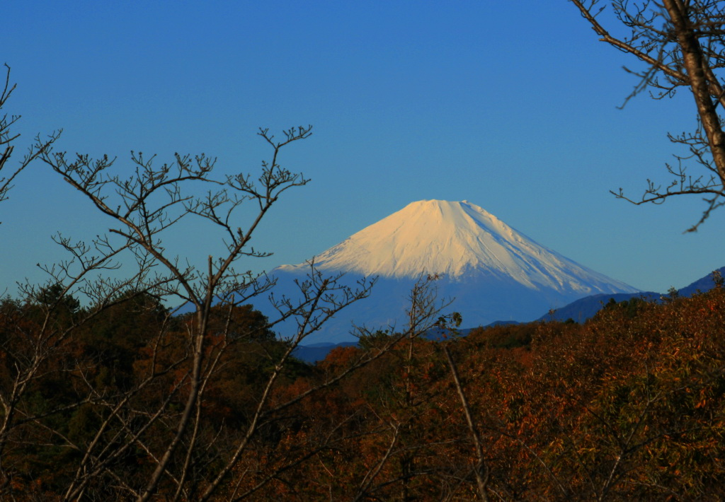 IMG_4223-fuji.jpg
