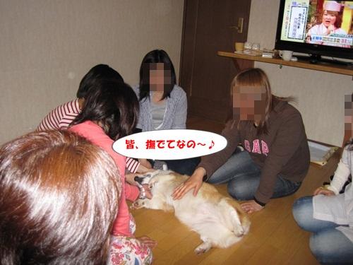 IMG_5820_20110531210430.jpg