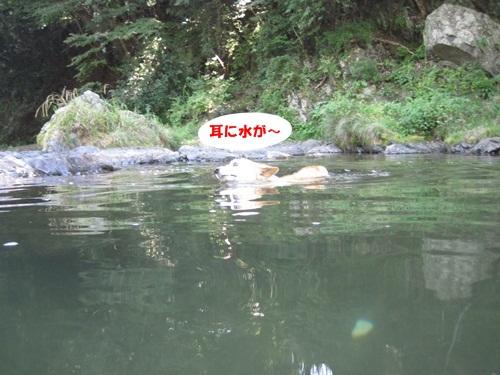 IMG_7802_20110717181329.jpg