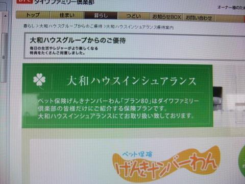 011_20120302193843.jpg