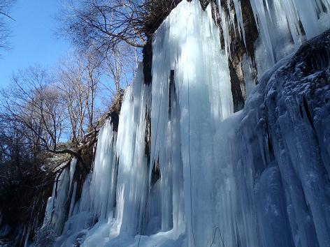 乱菊の氷柱