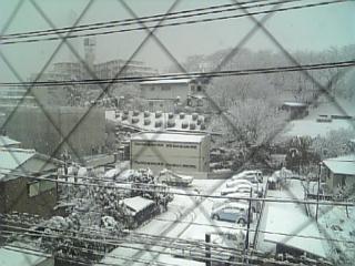 2月3日雪景色