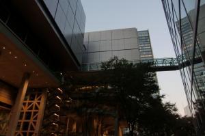 東京国際フォーラ厶05