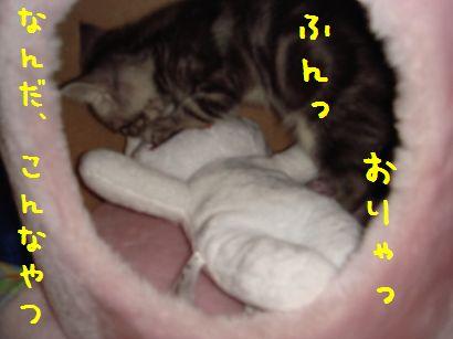 20070525000843.jpg
