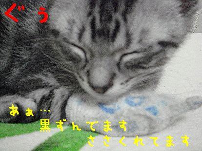 20070608015535.jpg