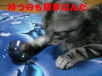 20070612013536.jpg