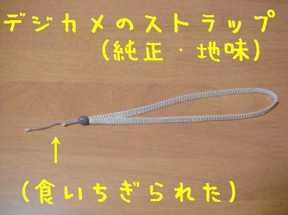 20070614190712.jpg