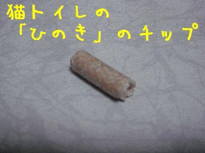20070614190733.jpg