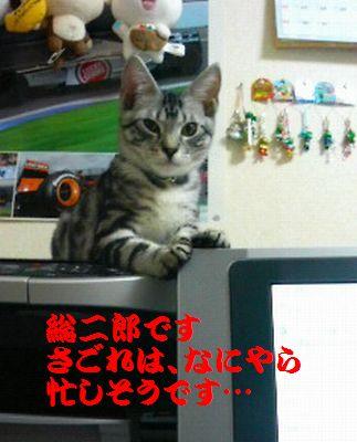 200707262159001.jpg
