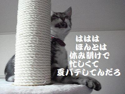 20070824100613.jpg