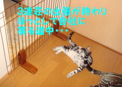 20070902011152.jpg