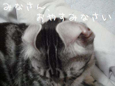 20070926004715.jpg