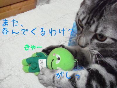 20071016090056.jpg