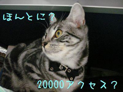 20071027135556.jpg