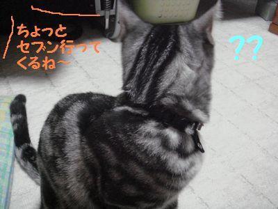 20071027135618.jpg