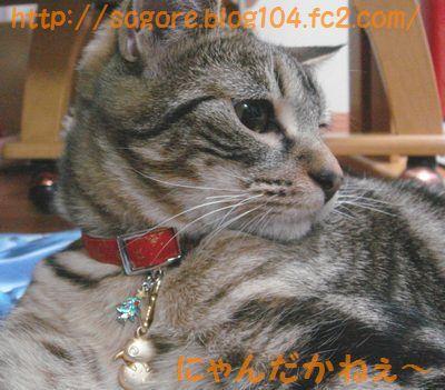 20071031031851.jpg