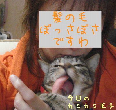 20071111174231.jpg