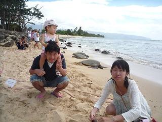 110707_ウミガメの浜 (2)