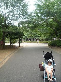 110718_木場公園