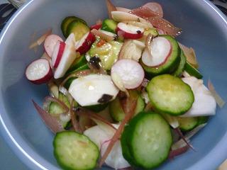 胡瓜茗荷蕪サラダ
