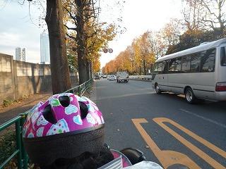 111126_新宿サイクリング (2)