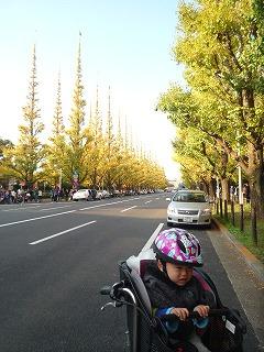 111126_新宿サイクリング (1)