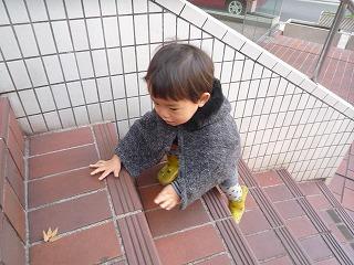 111208_保育園階段