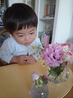 111210_お花観賞 (3)
